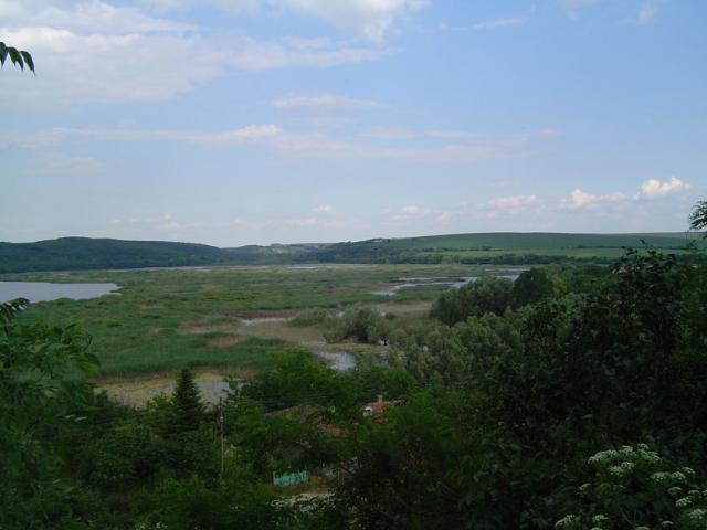 La réserve Srebarna